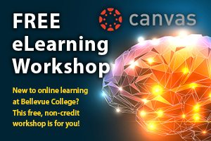 Ad for free eLearning Workshop links to information page