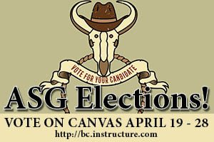 ASG Elections