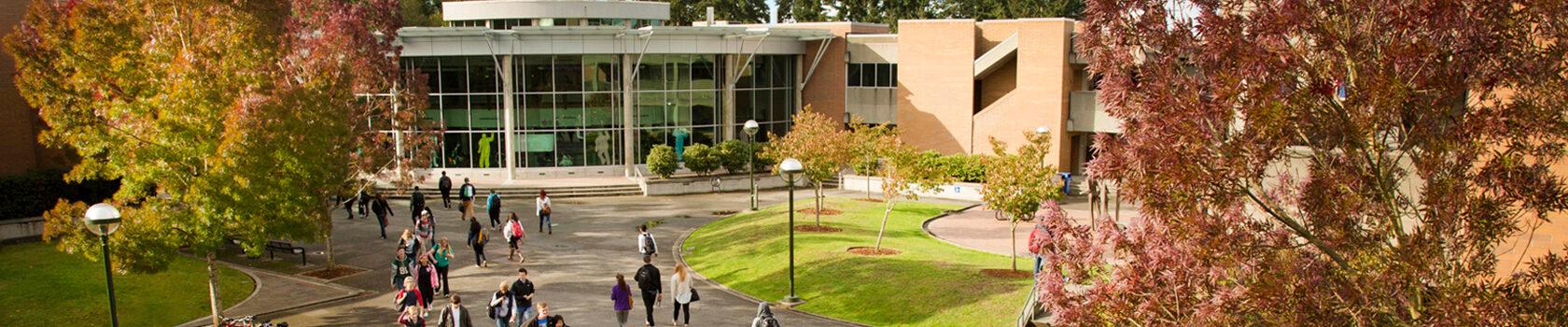 華盛頓州社區大學之一bellevuecollege