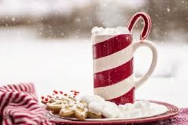 A mug filled with a warm drink and cookies representing winter