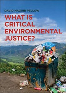 What is critical environmental justice book picture