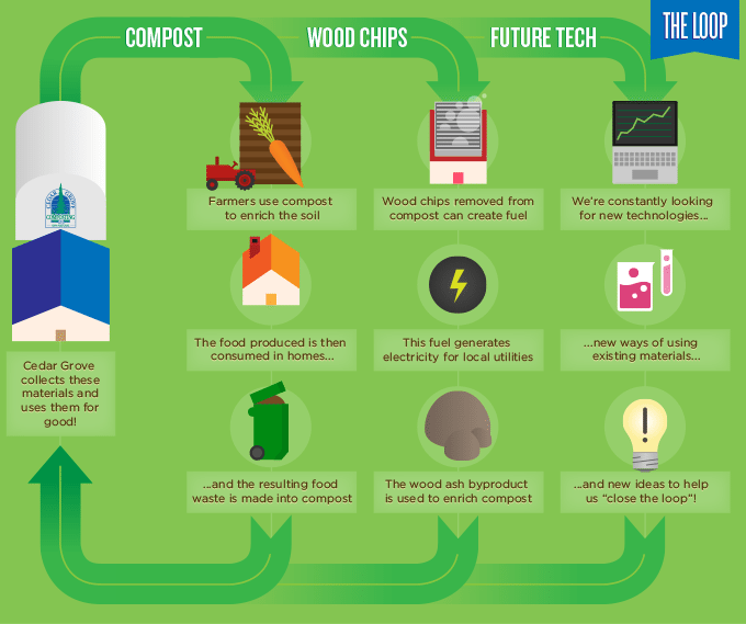 Composting cycles inforgraphic