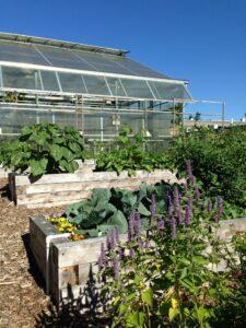 Bellevue College Greenhouse and Garden image
