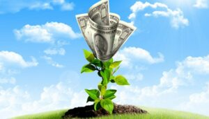Photo of green plant coming out of the ground with money blossoming and a blue sky behind it
