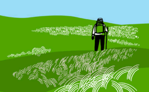 Man walking through green field