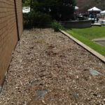 BC flower bed ready to replant with native plants