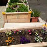 IDEA Garden flower bed