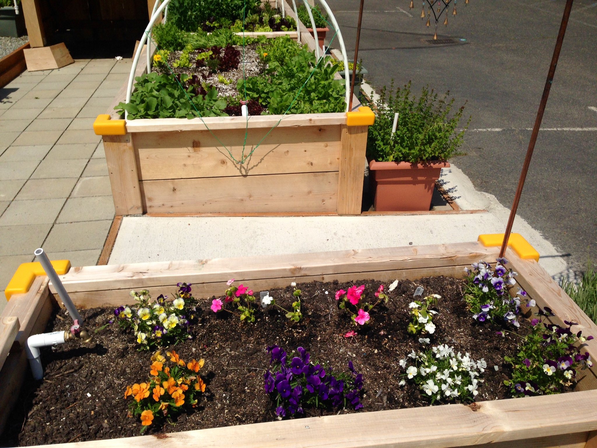 Superb IDEA Garden In May 3