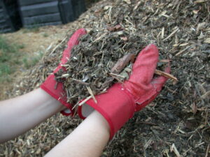 Mulch_shredded_yard_waste