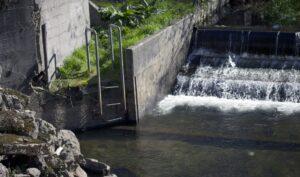 fish waterfall