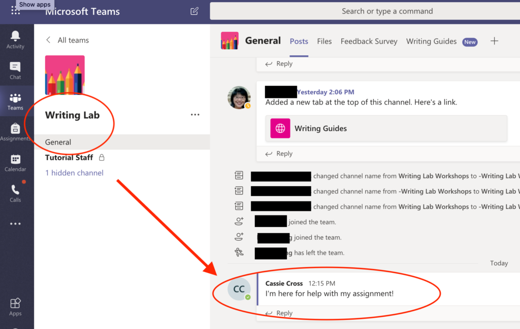 Screen capture that shows example of where students should type their message.