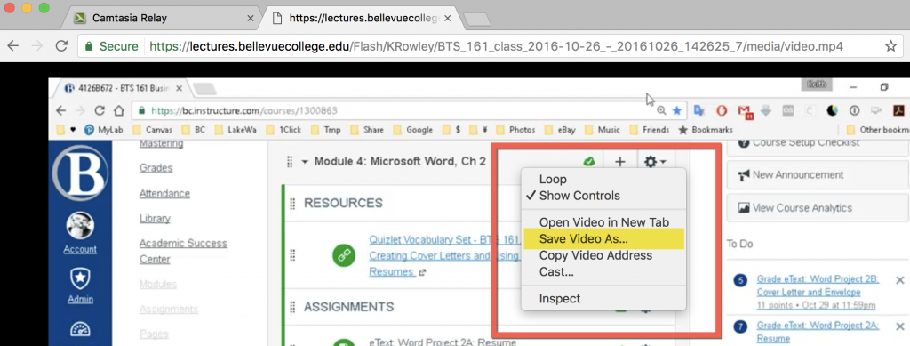 """The actual video (the .mp4 file) appears. Right-click on the video and choose """"Save Video As"""" or """"Download video"""" or some such."""