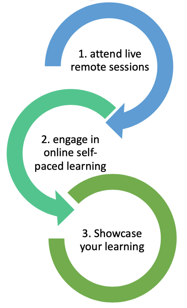 Summer Institute starts with the live remote session, then moves to the online self-paced learning, ending with a showcase of your learning