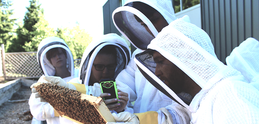 Beekeeping society harvesting honey from hives