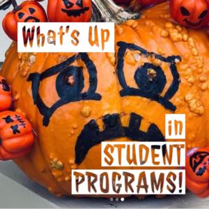 """Grumpy Pumpkin"" decorated in the no-carve Pumpkin Decorating Event"