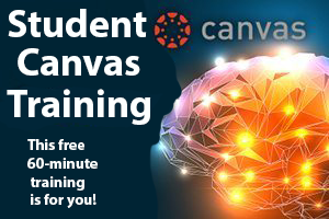 Student Canvas Training with digital brain image