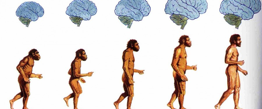 The picture above shows the evolution of man and mind.