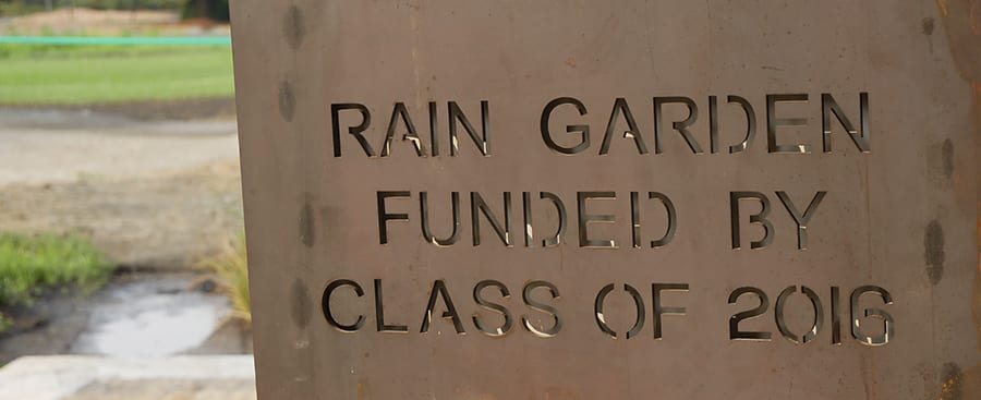Rain garden was funded by class of 2016.