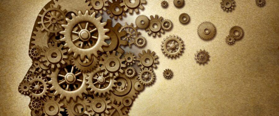 Head full of gears