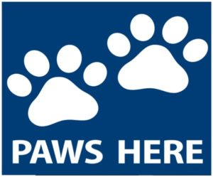 Blue Background with White paws with text Paws Here