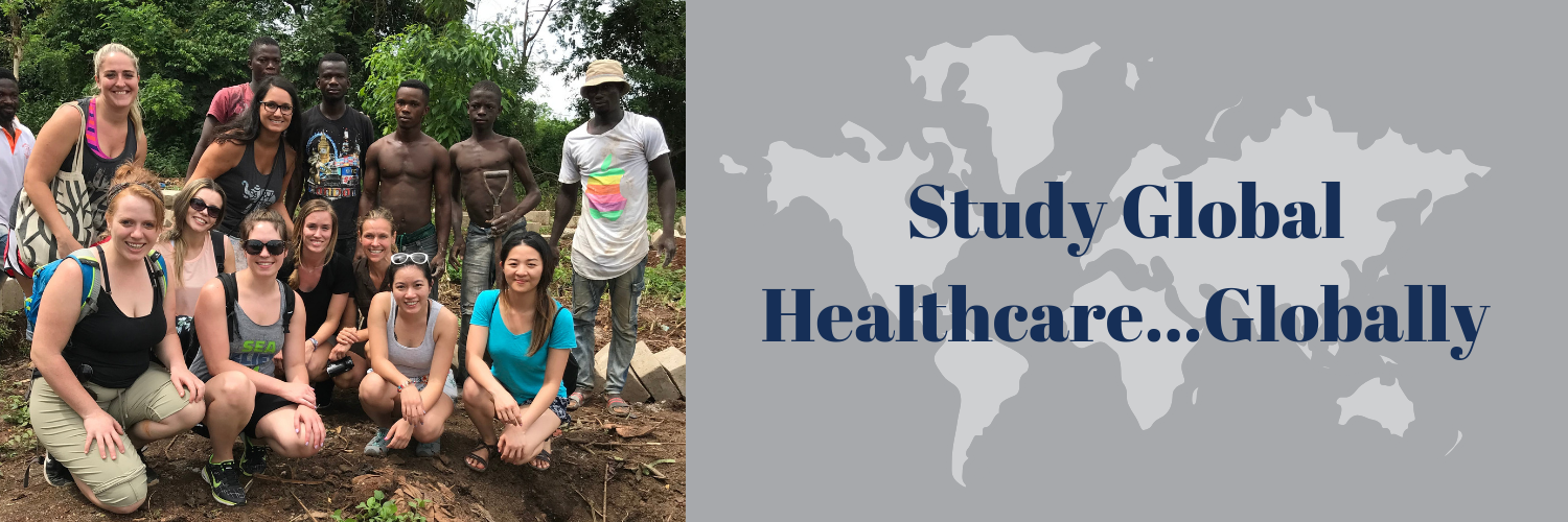 Study Global Healthcare...globally