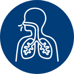 Human profile breathing using lungs