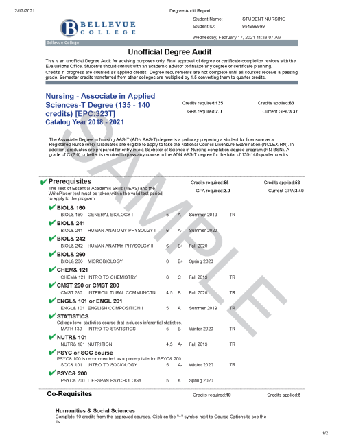 Bellevue College Degree Audit Sample