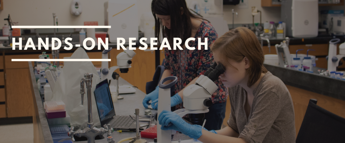 """Photo of two Bellevue College students working in the MBS lab with the words """"Hands-on Research Opportunities"""" to the right of the photo."""