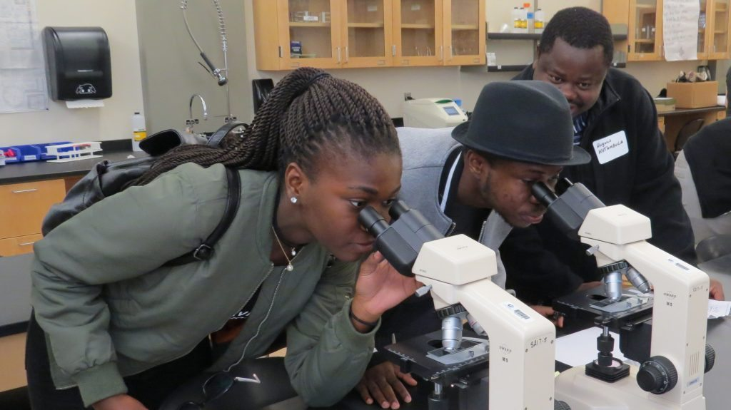 Picture of adult visitors peering through microscopes