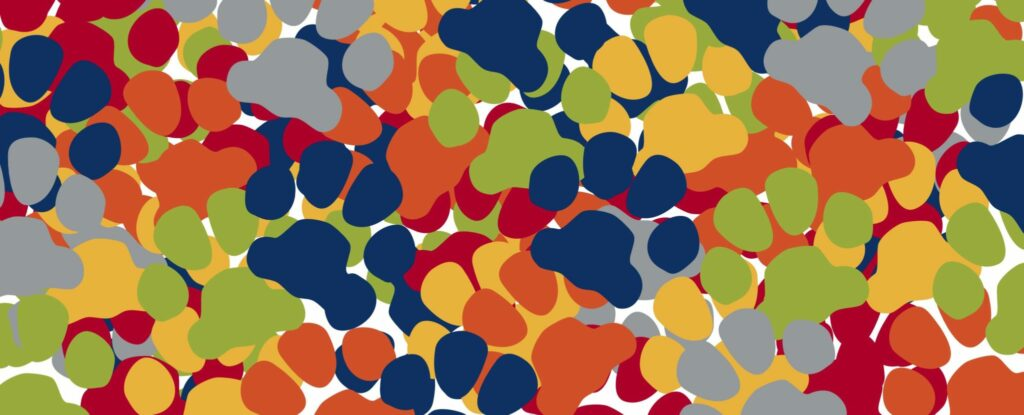 Multicolored pawprint collage in various directions.