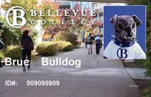 Brue Bulldog ID Card Image