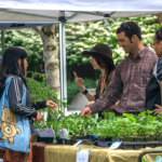 Students, faculty and staff enjoy the annual Earth Week Farmer's Market on the Bellevue College campus