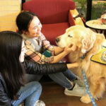 Therapy Dogs Calm Stressed Students During Finals Week