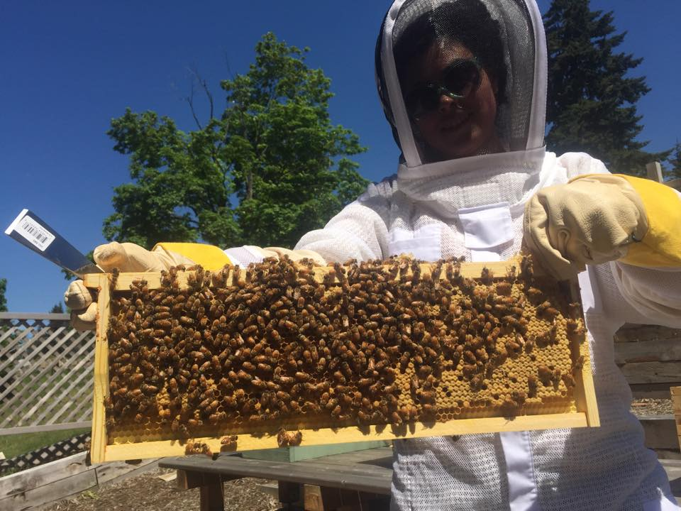 A student in protective wear holds up a honeycomb filled with bees