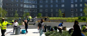 Growing a More Sustainable Campus