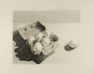 Art 120 Beginning Drawing, Value Study, Charcoal on Paper
