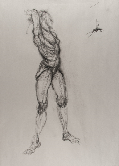 Art 121, Structure Study of the Human figure, Charcoal on Paper