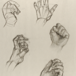 Art 121, 5 different views of the hand. From opened handed to closed fist