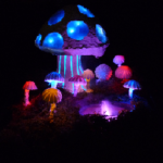 multicolored mushrooms