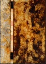 Gold, black, beige colors in an oil painting