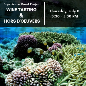 Invite to the Experience Coral Wine Tasting event