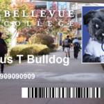 sample ID card with photo of Brutus