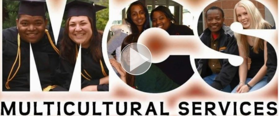 Multicultural Services - Links to video